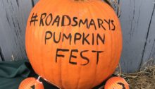 Roadsmary's Baby Pumpkin Festival